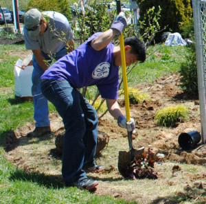 GE volunteer at Redwood