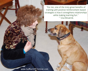 pet training quote by Lisa Desatnik