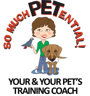 So Much PETential Cincinnati dog training by Lisa Desatnik