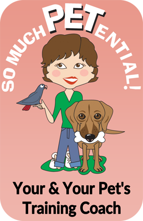 So Much PETential dog and parrot training in Cincinnati by Lisa Desatnik