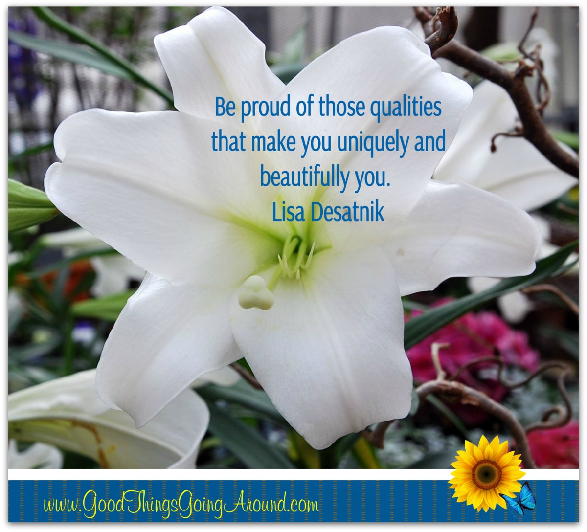 Be proud of what makes you uniquely different, beautiful and YOU!