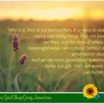 a quote by Lisa Desatnik of appreciation
